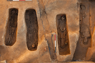 Excavations of four burials at the 1608 Jamestown Church site in James Fort. Burials (left to right) JAMESFORT-APV-2993B, JAMESFORT-APV-2992C, JAMESFORT-APV-3046C, and JAMESFORT-APV-170C. Preservation Virginia performed excavations between November 18 and November 21, 2013. Dr. Douglas Owsley, Curator, and Kari Bruwelheide, Museum Specialist, from the Division of Physical Anthropology at the Smithsonian Institution National Museum of Natural History performed in situ analysis of the burials.